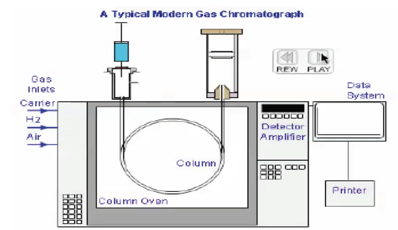 The top 2 problems seen with Gas Chromatography BAC results ... Gas Chromatography System Schematic Diagram on