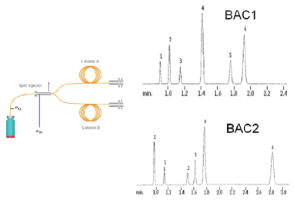 The top 2 problems seen with Gas Chromatography BAC results